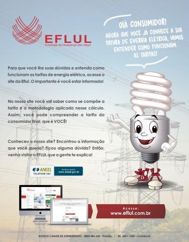 0150a7bfa3c Notícias   Eventos - Entenda a tarifa da energia elétrica - EFLUL